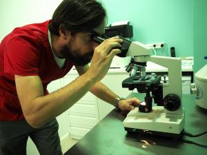 análisis-clínicos-veterinaria-huellas